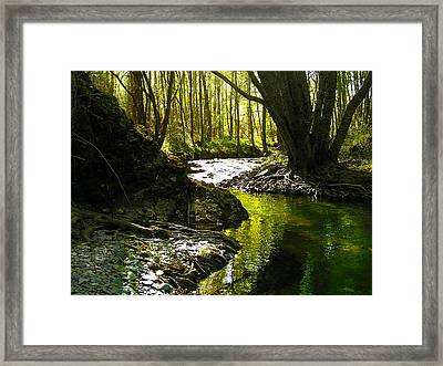 Gold River Framed Print by Guadalupe Nicole Barrionuevo