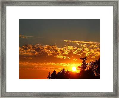 Gold Sunset Framed Print by Jim Moore