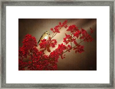 Goldcrest On A Branch Framed Print