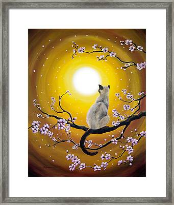 Golden Afternoon Sakura Framed Print