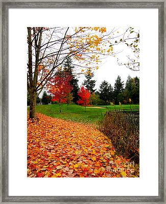 Golden Autumn  2 Framed Print by Tanya  Searcy