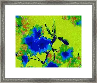 Golden Blossom Framed Print by Jen White