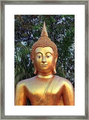 Golden Buddha Statue Framed Print by Thomas  von Aesch