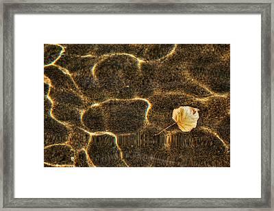 Golden Buoyant Autumn Haiku Framed Print