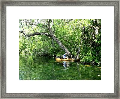 Golden Canoe Launch Framed Print by Marilyn Holkham