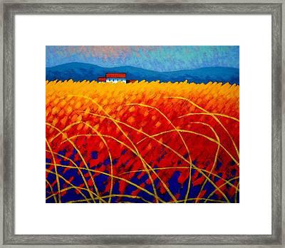 Golden Cornfield Framed Print