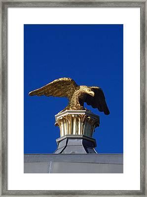 Golden Eagle Framed Print by Lisa Phillips