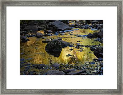 Golden Fall Reflection Framed Print by Heather Kirk