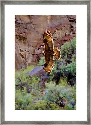Framed Print featuring the photograph Golden Flight  by Britt Runyon