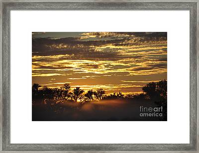 Framed Print featuring the photograph Golden Fog by Tamera James