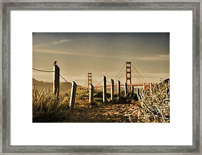 Golden Gate Bridge - 3 Framed Print