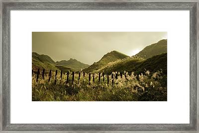 Golden Hills Framed Print by Tnwy