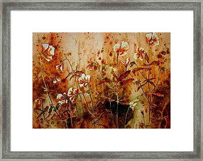 Golden Hues Framed Print by Carolyn Rosenberger