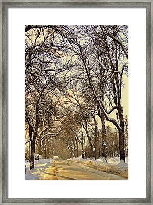 Framed Print featuring the photograph Golden Hues by Michael Dohnalek