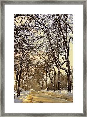 Golden Hues Framed Print