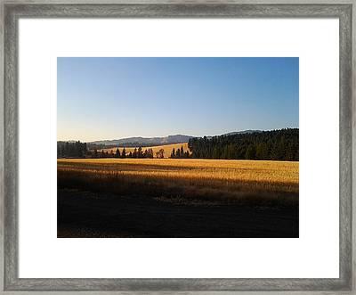 Golden Landscape Framed Print by Debbi Saccomanno Chan