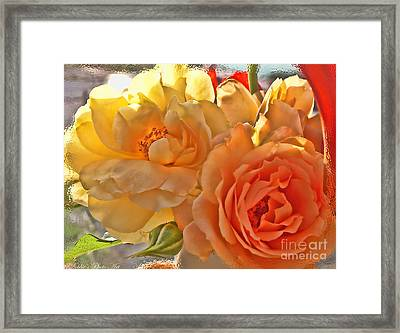 Framed Print featuring the photograph Golden Light by Debbie Portwood