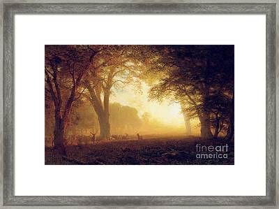 Golden Light Of California Framed Print by Albert Bierstadt