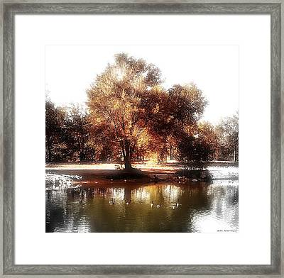 Golden Meadow Framed Print by Michelle Frizzell-Thompson