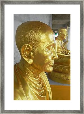 Golden Monk Framed Print by Jarrod Faranda
