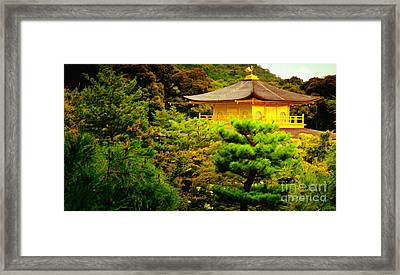 Golden Pavilion Temple In Kyoto Glowing In The Garden Framed Print by Andy Smy