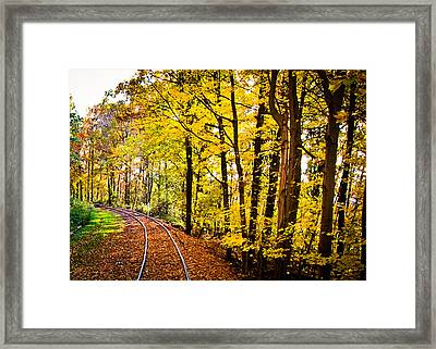 Golden Rails Framed Print by Sara Frank