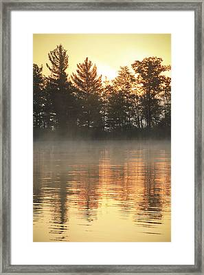 Golden Ripples Framed Print