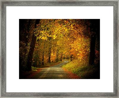 Golden Road Framed Print by Joyce Kimble Smith
