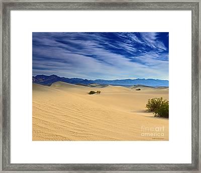 Golden Sand Dunes Death Valley National Park Framed Print
