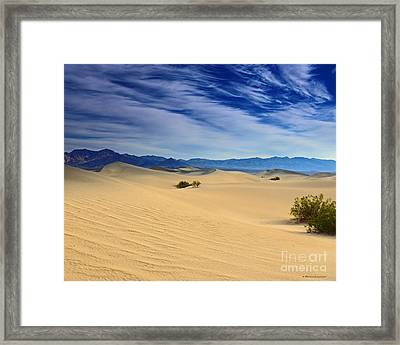 Golden Sand Dunes Death Valley National Park Framed Print by Nature Scapes Fine Art