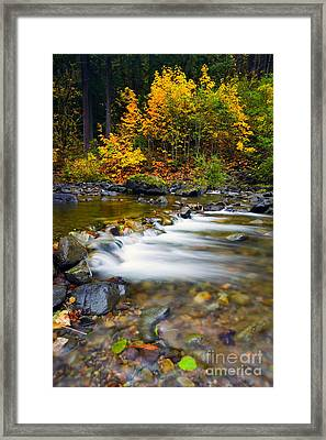Golden Shores Framed Print by Mike  Dawson
