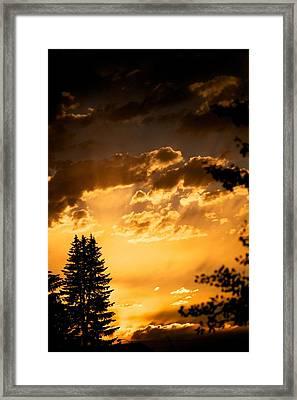 Golden Sky Framed Print by Kevin Bone