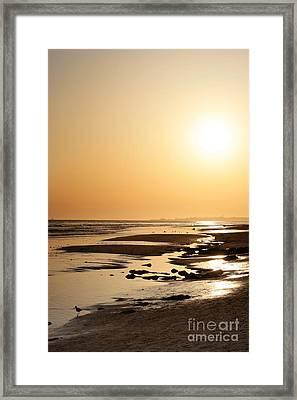 Golden Sunset- California Coast Framed Print by Danuta Bennett