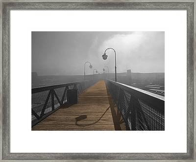 Golden Trail Framed Print