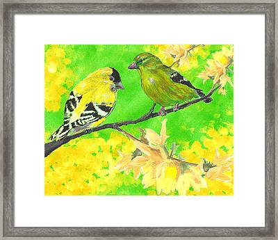 Goldfinches And Forsythia Framed Print by Forrest C Greenslade PhD