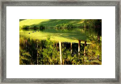 Golf Course Reflections 2 Framed Print by Tanya  Searcy
