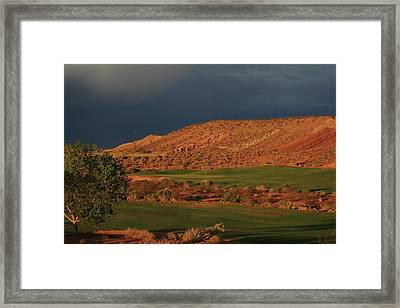 Golfers  Dream Framed Print