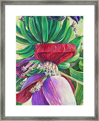 Gone Bananas Framed Print by Li Newton