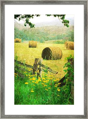 Good Day For Dreams Framed Print