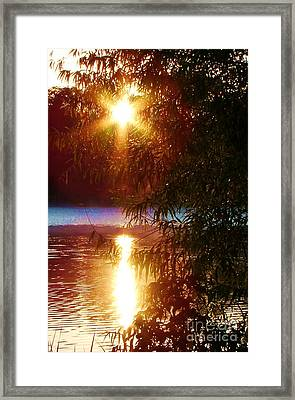 Good Morning Soddy Framed Print