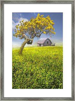 Good Morning Spring Framed Print by Debra and Dave Vanderlaan
