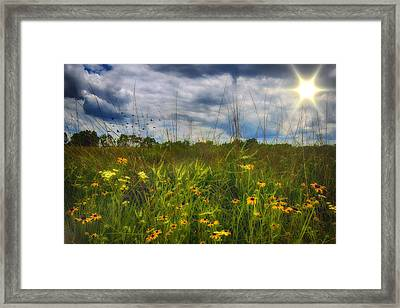 Good Morning Sunshine Framed Print by Bill Tiepelman