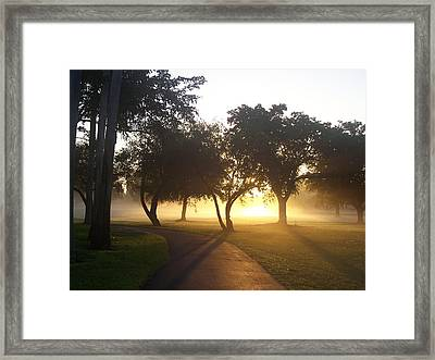 Good Morning World Framed Print by Sheila Silverstein