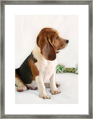 Good Ol' Snoopy Framed Print by Christine Till