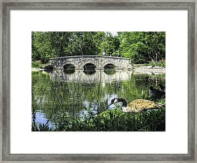 Framed Print featuring the photograph Goose And Bridge At Silver Lake by Tom Gort
