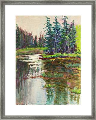 Goose Cove In Acadia Framed Print