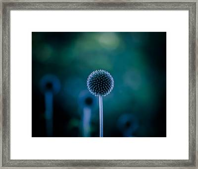Gorgeous Glowing Globe Framed Print by Kevin Lee-Cerrino