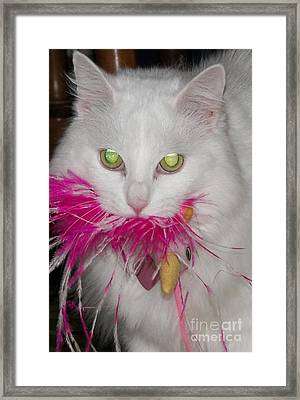 Framed Print featuring the photograph Got It by Judy Via-Wolff