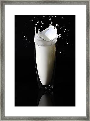 Got Milk 2 Framed Print by Michelle Armstrong
