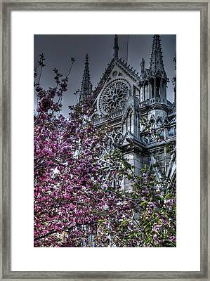 Gothic Paris Framed Print by Jennifer Ancker